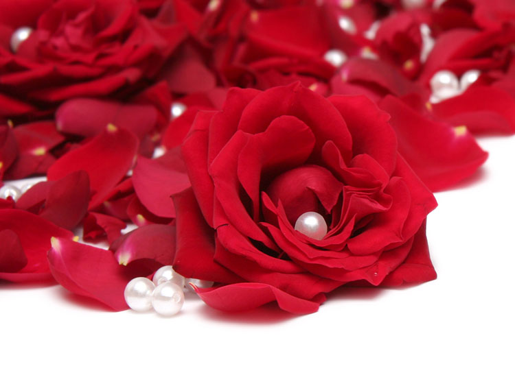 Подарочный сертификат Салона красоты Red Rose в Минске